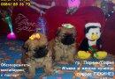 Мъжко и женско кученца порода Пекинез