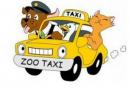 ЗооТакси предлага бърз и ЛИЦЕНЗИРАН транспорт в БГ и чужбина