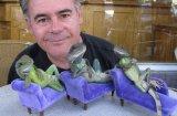 Фотографът, който е обсебен от игуани