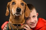 9 признака, че детето ви не е готово да приеме куче у дома