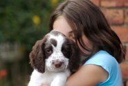 Полезни съвети за обезопасяване на дома при отглеждане на кученце