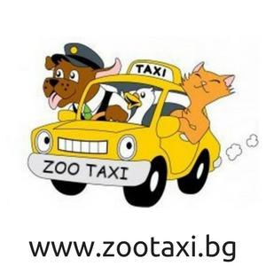 ЗооТакси предлага бърз и ЛИЦЕНЗИРАН транспорт в България  и чужбина