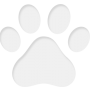 Продавам мъжко кученце чихуахуа на 2 месеца